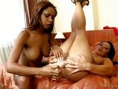 Horny lesbian babes from EvilAngel HD